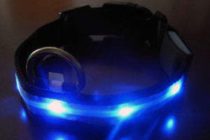 Review: Vivaglory Dog Collar LED Light Safety Collar