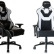Review: EWin Flash Series Ergonomic Computer Gaming Office Chair with Pillows