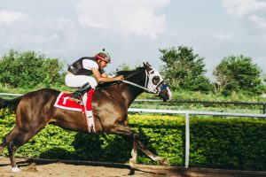 6 Great Horse Racing Betting Tips