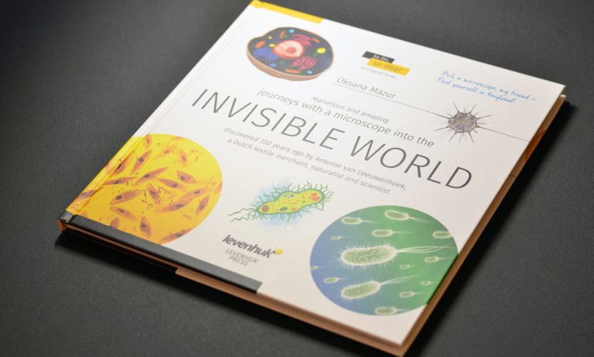 Book review: Invisible World by Oksana Mazur